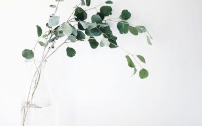 Why choose minimalist design?